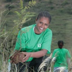 Irish NGO plants 300,000 trees in Ethiopia